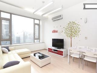 Gangnam Comfortable Duplex @ gangnam stn. - South Korea vacation rentals
