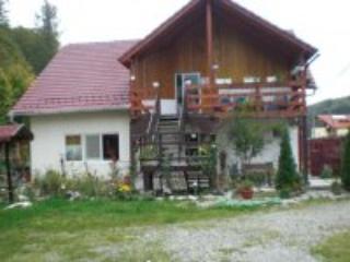Pensiunea  BALEA , Transfagarasan Road - Cartisoara vacation rentals