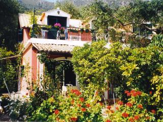 Pretty Studios close to the beach in Corfu - Kavos vacation rentals