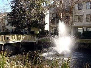Courtside 85 - Ground Floor - Forest Beach - Hilton Head vacation rentals