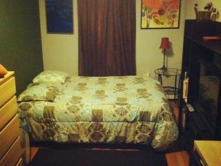 Brooklyn Sublet.. 20 Min Away frm Manhattan - New York City vacation rentals