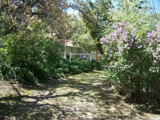 Cathleen's Pet-Friendly Cottage - Julian vacation rentals