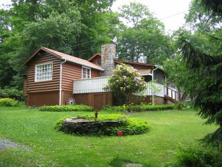 Smallwood Cabin, Lake Access, near Bethel Woods - Forestburgh vacation rentals