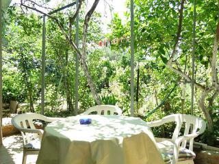 Apartments Baras  AP2 - 2+1 - Slatine vacation rentals