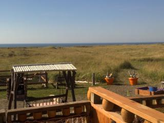 Best Priced OCEANFRONT Home - Pet Friendly- Views! - Southern Washington Coast vacation rentals