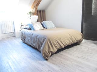 NEW DIJON CENTER LES HALLES / PLACE DARCY - Lux vacation rentals