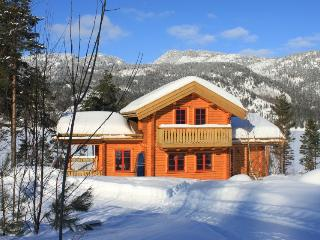Suberb cabin in sunny Telemark - Vestfold vacation rentals