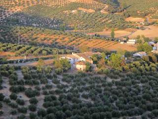 Olive Grove Farmhouse Apartment - Self Catering - Ribera Alta vacation rentals