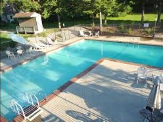 Twin Lakes Resort Condo - Athol vacation rentals