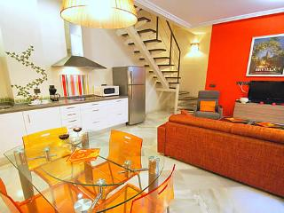 Lovely Duplex in the Centre of Sevilla - Ap Jaen - Seville vacation rentals