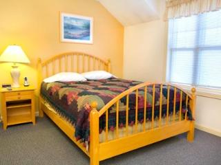 Mt View Resort 2br condo with view, amenities located at Eastern Slope Inn - indoor pool, hiking and cross-country trails - North Conway vacation rentals