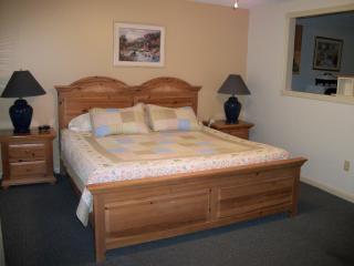 Mt View Resort studio condo with view, amenities l - North Conway vacation rentals
