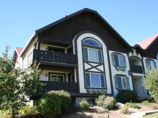 Midway family condo, close to Zermatt, Homestead, Soldier Hollow, Park City - Midway vacation rentals