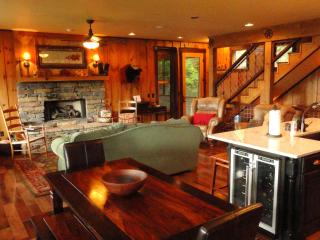 3 Bear Lodge - What a view! - Hayesville vacation rentals