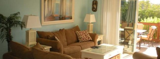 Bayview 3 Bedroom Condo #34 ~ RA43913 - Nokomis vacation rentals