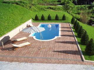 Villa Marija modern&traditional FIRST MINUTE -15% - Buzet vacation rentals