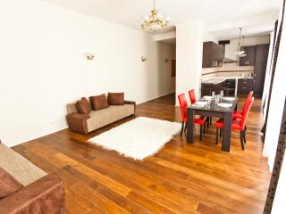 Apartment for 9 persons in Old town - Vilnius vacation rentals