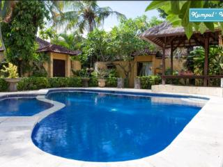 Budget Villa 2 Bedrooms Legian - Seminyak vacation rentals