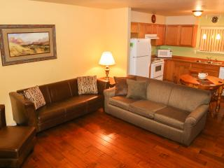 Downtown Sandpoint | 2 Bedroom Comfy Condo - Sandpoint vacation rentals