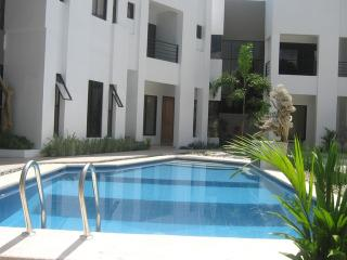 Modern White Villa with Pool and Maid - Mati City vacation rentals