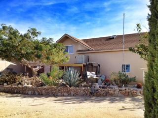 The Cactus Patch: Your home away from home - Joshua Tree vacation rentals