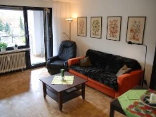 Vacation Apartment in Bad Harzburg - 355 sqft, bus stop next to the house, parking space available,… - Clausthal-Zellerfeld vacation rentals
