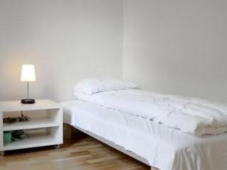 4 Bedrooms Apartment in Oslo - Oslo vacation rentals