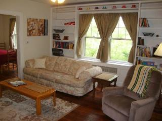 Pet Friendly, Fenced Yard, Sunny and Bright! Wi-Fi and Screened Porch. - Asheville vacation rentals