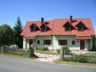 LLAG Luxury Vacation Apartment in Flossenbürg - 700 sqft, cozy, quiet, comfortable (# 4823) - Barnau vacation rentals