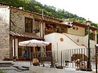 Casa Castanea F - Image 1 - Pescia - rentals