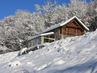 Le Pelioou- Renovated Stone Barn w/ Mountain Views - Foix vacation rentals