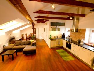 Cozy 2-BDR Top Floor Apt., Sauna Air/Con WiFi Lift - Bohemia vacation rentals