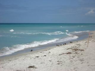 Longboat Key Beachfront Las Hermanas/Starfish #2 - Longboat Key vacation rentals