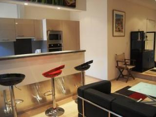 Jaures 1 Bedroom Cannes Apartment, Near the Palais des Festivals and to the Croisette - Cannes vacation rentals