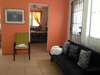 Walk from ferry Convenient location in town apt - Isla de Vieques vacation rentals