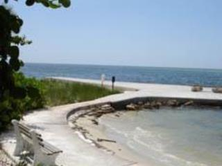 Pier and Beach - Gulf Beach, Pool  And Walk To Siesta Key Village - Siesta Key - rentals