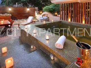MULTI-LEVEL MASTERPIECE WITH PRIVATE JACUZZ (PT7) - Buenos Aires vacation rentals