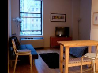 Gorgeous Studio/View/Luxury Building - New York City vacation rentals
