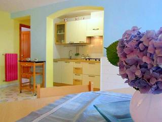 Apartment Orange in Sorrento centre. - Massa Lubrense vacation rentals
