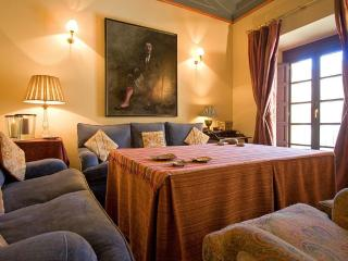 River House Seville Old Town Luxury and Comfort - Seville vacation rentals