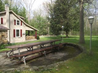 Ligonier Wooded Cabin on 3 acres with Rec Bldg ! - Ligonier vacation rentals