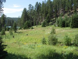 Rocky's Retreat a Country Home in the Forest - South Dakota vacation rentals