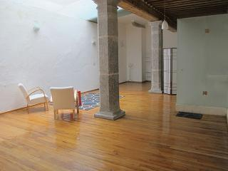 LOFT in Puebla's Downtown - Puebla vacation rentals