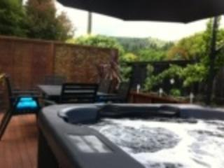 Spa pool and back deck - Redwoods Retreat - Rotorua - rentals