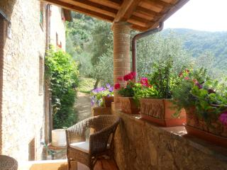 House in Camaiore: culture, food and wine vacation - Camaiore vacation rentals