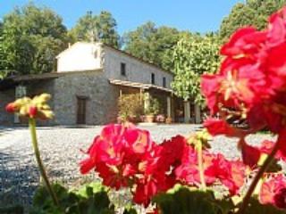 Villa Clemente - San Vincenzo vacation rentals