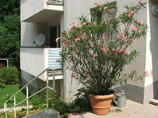 Apartment24 Grinzing - Exclusive Vienna location - Image 1 - Vienna - rentals