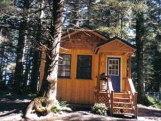 Serenity by the Sea Cabin Aialik Glacier Cabin - Millane's Serenity by the Sea  Aialik Glacier Cabi - Seward - rentals