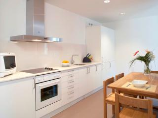 Sant Antoni apartment 3 bedrooms -city center - Barcelona vacation rentals