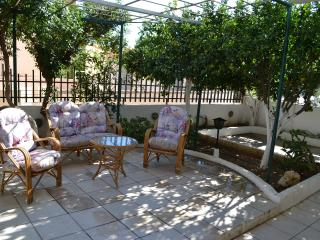 APARTMENT NEAR THE BEACH WITH GARDEN - Agia Pelagia vacation rentals